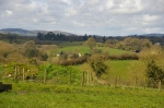 Looking over old house site towards Brookeborough